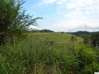 Lot 2  Baldwins View Drive  , New Market, TN  (#190513) :: The Terrell Team