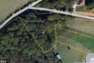 Lot 20  Baldwin View Dr  Lot 20, New Market, TN 37820 (#190530) :: The Terrell Team