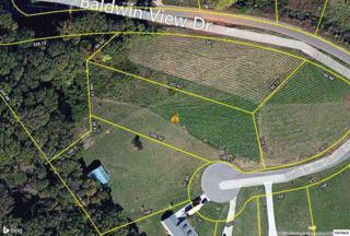 Lot 17  Walk In The Clouds Court  Lot 17, New Market, TN 37820 (#190532) :: The Terrell Team