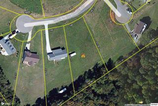 Lot 12  Walk in The Clouds Court  Lot 12, New Market, TN 37820 (#190533) :: The Terrell Team