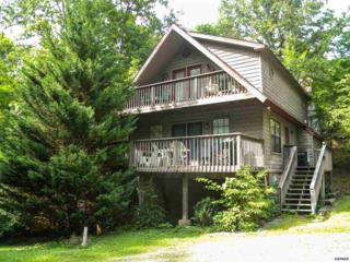 2711  Timber Way  Little Green Br, Pigeon Forge, TN 37863 (#190692) :: The Terrell Team