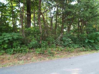 Lot 102 A  Shell Mountain Road  , Sevierville, TN 37862 (#190791) :: The Terrell Team