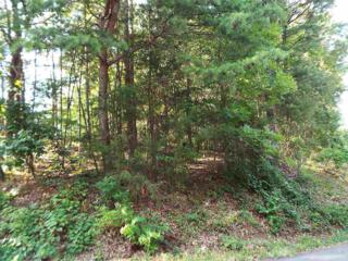 Lot 097A  Shell Mountain Road  , Sevierville, TN 37862 (#190796) :: The Terrell Team
