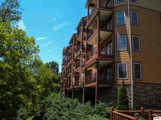 527  River Place Way  Unit 332, Sevierville, TN 37862 (#190875) :: The Terrell Team
