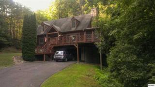 2206  Castle Rise Way  , Sevierville, TN 37876 (#190877) :: The Terrell Team