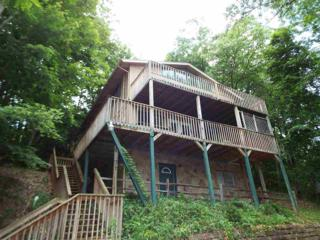 1441 S Baden Dr  , Gatlinburg, TN 37738 (#191050) :: The Terrell Team