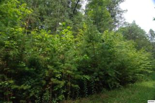 Lot 4  Coy Rhea Way  , Sevierville, TN 37876 (#191069) :: The Terrell Team