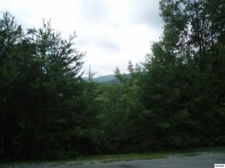 Lot 23  Mountain Dreams Way  , Sevierville, TN 37862 (#191076) :: The Terrell Team