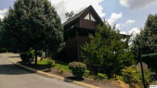 1958  Cougar Crossing Way  Eagles Wings, Sevierville, TN 37876 (#191202) :: The Terrell Team