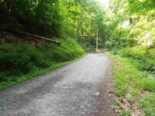 Lot 1182  Walnut Ct  , Sevierville, TN 37876 (#191506) :: The Terrell Team