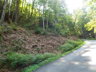 Lot 1138  Bobs Pass  , Sevierville, TN 37876 (#191507) :: The Terrell Team