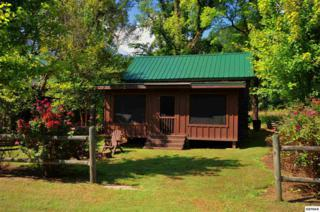 335  Stables Dr  , Townsend, TN 37882 (#191706) :: The Terrell Team