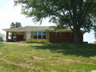 2993  Valley Home Rd  , White Pine, TN 37890 (#191708) :: The Terrell Team