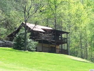 4149  Firefly Lane  Wears Valley, Sevierville, TN 37862 (#191709) :: The Terrell Team