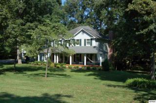 1517  Peach Tree St  , Sevierville, TN 37862 (#191710) :: The Terrell Team