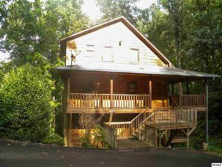 1230  Hemlock Dr  Making Memories, Gatlinburg, TN 37738 (#191802) :: The Terrell Team