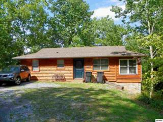3317  Scenic View Lane  , Pigeon Forge, TN 37863 (#191966) :: The Terrell Team