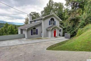 852  Village Loop Road  , Gatlinburg, TN 37738 (#191997) :: The Terrell Team