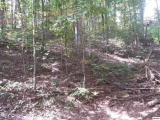Lot 179  Pine Trail  , Sevierville, TN 37876 (#192364) :: The Terrell Team