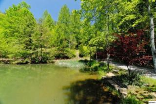 Lot 28  Sourwood Way  , Sevierville, TN 37862 (#192370) :: The Terrell Team