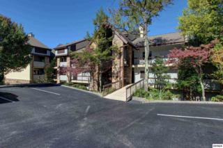 1130  Ski View Drive  Unit 305, Gatlinburg, TN 37738 (#192544) :: The Terrell Team