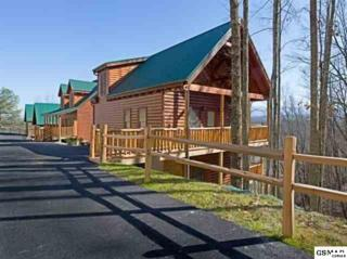 2251  Upper Middle Creek Rd  Horsin' Around, Pigeon Forge, TN 37876 (#192558) :: The Terrell Team