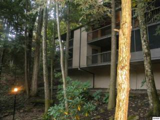 1235  Ski Mountain Rd  Unit 625, Gatlinburg, TN 37738 (#192656) :: The Terrell Team
