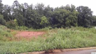 Lot 4  Ashley Meadows  , Strawberry Plains, TN 37871 (#192709) :: The Terrell Team