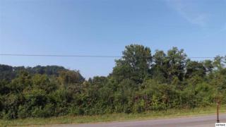 Lot 3 & 4  Davis Hollow Road  , Jefferson City, TN 37760 (#192712) :: The Terrell Team