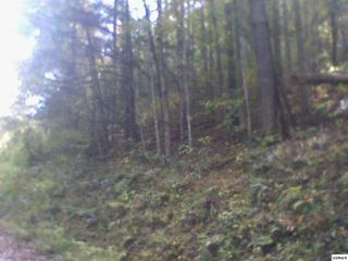 Lot 8  Emerald Springs Loop  Shagbark Sectio, Sevierville, TN 37876 (#192746) :: The Terrell Team