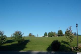 Lot 52  Lexington Park Ave.  , Sevierville, TN 37862 (#192755) :: The Terrell Team