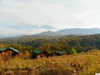 783  Park Vista Way  Lot 69, Gatlinburg, TN 37738 (#192901) :: The Terrell Team