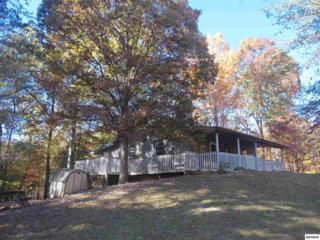 1517  Hidden Circle  , Sevierville, TN 37876 (#192902) :: The Terrell Team