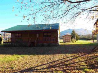 193  Padgett Mill Rd.  , Cosby, TN 37722 (#193136) :: The Terrell Team