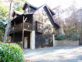 657  Eagles Boulevard Way  , Pigeon Forge, TN 37863 (#193271) :: The Terrell Team