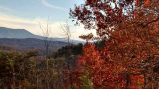 Lot 10  Blackthorn Trl.  , Sevierville, TN 37876 (#193278) :: The Terrell Team