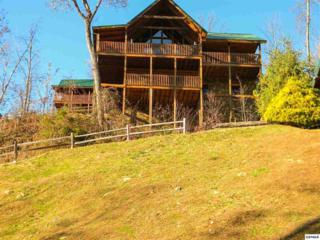 961  High Mountain Way  Peak Of Perfect, Gatlinburg, TN 37738 (#193382) :: The Terrell Team