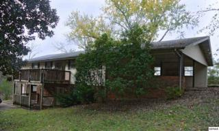 535  Rush Branch  , Pigeon Forge, TN 37863 (#193522) :: The Terrell Team
