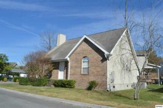 313  Creekwalk Boulevard  , Pigeon Forge, TN 37863 (#193604) :: The Terrell Team