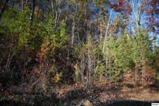 Lot 20  Hummingbird Hill Way  , Sevierville, TN 37862 (#193615) :: The Terrell Team