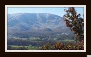 Lot 14  Hideaway Mountain  , Sevierville, TN 37862 (#193636) :: The Terrell Team