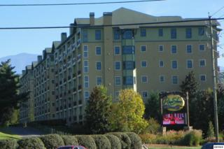 212  Dollywood Lane  Unit #146, Pigeon Forge, TN 37863 (#193647) :: The Terrell Team