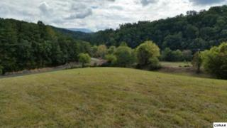 7.3 acres  River Divide  , Sevierville, TN 37876 (#193651) :: The Terrell Team