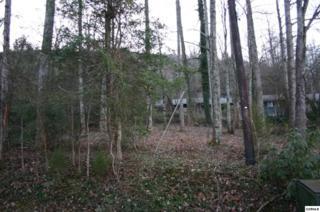 Lot 24  Hilltop Rd  , Gatlinburg, TN 37738 (#193652) :: The Terrell Team