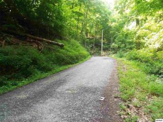 Lot 0545  Deep Hollow Ct.  , Gatlinburg, TN 37738 (#193703) :: The Terrell Team