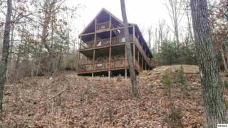 2715  Overholt Trail  Above And Beyon, Sevierville, TN 37876 (#193870) :: The Terrell Team