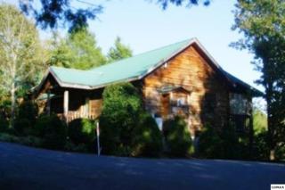 "3211  Steeple Way  ""Mountain Magic, Pigeon Forge, TN 37863 (#194098) :: The Terrell Team"