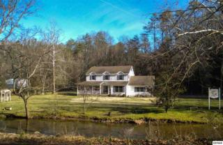 3815  Old Birds Creek Road  Pokeberry Hollo, Sevierville, TN 37876 (#194108) :: The Terrell Team