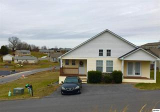 1514  Cypress View Ct  , Sevierville, TN 37862 (#194157) :: The Terrell Team