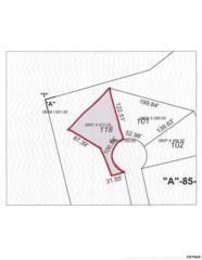 lot 118  Mcinturf Way  , Sevierville, TN 37876 (#194208) :: The Terrell Team